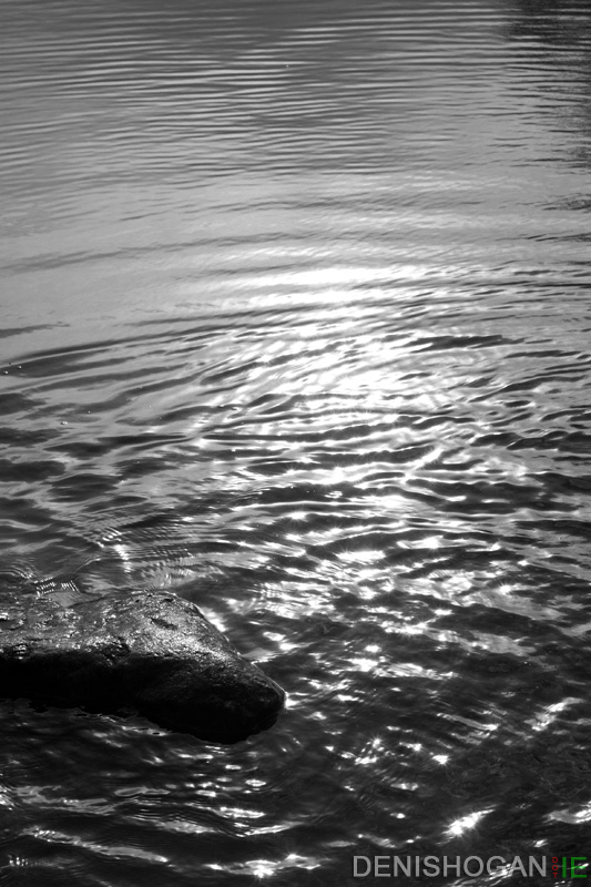 Ripples in the Sun
