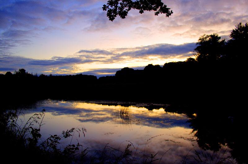 Sunset behind Curraghchase